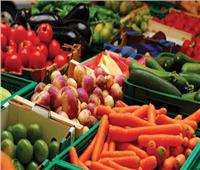 «أسعار الخضروات» في سوق العبور اليوم الثلاثاء