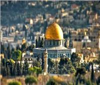 مفتي فلسطين: الأموات في قبورهم تأذوا من الممارسات الصهيونية