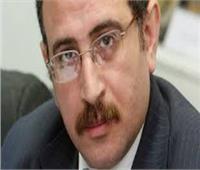 طارق فهمي: العلاقات المصرية الروسية تاريخية