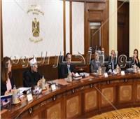 تعليق مجلس الوزراء على حريق زراعات النخيل بالوادي الجديد