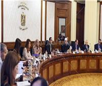 الحكومة توافق على حملة إعلامية لتنفيذ التعداد الاقتصادي الخامس 2018