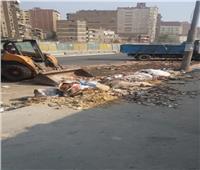 التنمية المحلية تستجيب لشكاوى المواطنين بشأن القمامة بجسر السويس