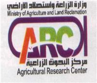«البحوث الزراعية» يمنح المحالين للكادر العام 6 أشهر للانتهاء من أبحاثهم