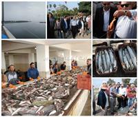 بشائر الخير لموسم الصيد من «برسيق وادكو».. وتخصيص 25 % من الإنتاج لأهالي البحيرة