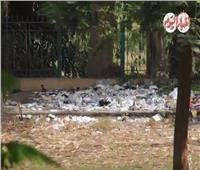 فيديو وصور| القناطر الخيرية من منتجع للغلابة إلي تجمعات القمامة