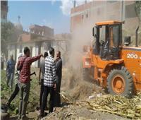 إزالة 557 حالة تعد على الأراضي الزراعية وأملاك الدولة بالغربية