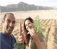 حكاية خالد وجيهان على شط الهوى فى «دار جان»