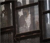 شاهد في «أنصار بيت المقدس»: لم أشاهد واضع قنبلة أبو صوير