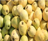 «الزراعة»: رفع الحظر عن صادرات الجوافة المصرية إلى السعودية