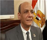 فيديو| «عبد الحليم»: مصر تسير على الطريق الصحيح لترسيخ الأمن