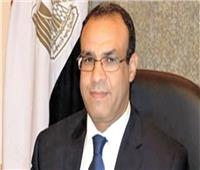 الفيديو| عبد العاطي: مصر أفضل 10 دول في تقديم ضمانات الاستثمار