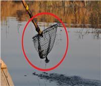 مصرع عامل صعقا أثناء محاولته صيد الأسماك بالكهرباء