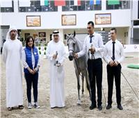 صور| « الزراعة»: مذكرة تفاهم مع الإمارات لبناء مستشفى للخيول بمصر