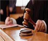 قاضي «التخابر» يفض حرز  مقابلة الشاطر وسفير الولايات المتحدة