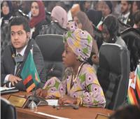 صور| «التكامل الاقتصادي».. شعار الشباب بنموذج محاكاة القمة العربية الأفريقية