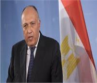 وزير الخارجية سامح شكري يلتقي رئيس الوزراء البحريني