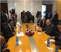 وزير الخارجية يبحث تطورات سد النهضة والعلاقات الثنائية مع نظيره الإثيوبي