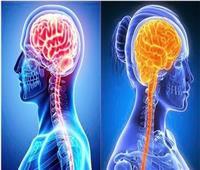 تعرف على أوجه الاختلاف بين «دماغ» الرجل والمرأة