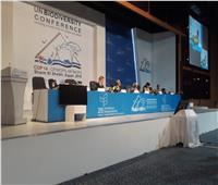 وزيرة البيئة: العالم يواجه تحديات فقدان التنوع البيولوجي وتغير المناخ