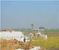 إزالة 144 حالة تعدٍ على الأراضي زراعية بمراكز أسيوط