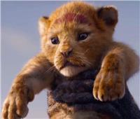 الإعلان التشويقي لفيلم «The lion king» يتجاوز 300 مليون مشاهدة