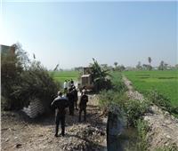إزالة 47 حالة تعد على الأراضي الزراعية بالفيوم
