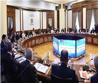 الحكومة توافق على إنشاء منطقة حرة باسم الشركة الوطنية للتطوير بمدينة بدر