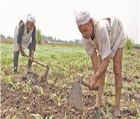 أزمات الفلاحين.. «كابوس» يهدد الزراعة
