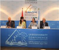 وزيرة البيئة: التصديق على الإعلان السياسي لخارطة الطريق لما بعد 2020