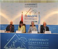وزيرة البيئة: التصديق على الإعلان الرئيسي لمؤتمر الأمم المتحدة للتنوع البيولوجي
