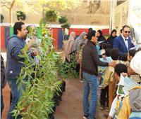 حملات تشجير وتوعية بمدارس المحلة الكبرى