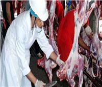 شعبة القصابين: الزراعة سبب الاعتداء على طبيب بيطري في دمنهور