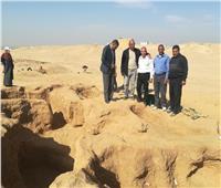 بعثات أجنبية ومصرية لترميم معبد في الفيوم
