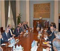 شكري يؤكد أهمية مواصلة الجهود لتنفيذ تكليفات القيادة السياسية