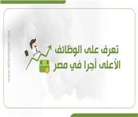 إنفوجراف| تعرف على الوظائف الأعلى أجرًا في مصر