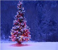 بالصور| أجمل 10 أشجار «كريسماس» من الماركات العالمية
