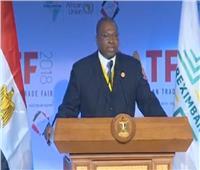 رئيس البنك الإفريقي: الاستعمار حرمنا من الصناعة والتجارة البينية