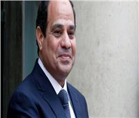 رئيس تنزانيا يصف السيسي بـ«الأخ» والمصريين بالعظماء