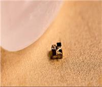باحثون يطورون حاسوب أصغر من حبة الارز