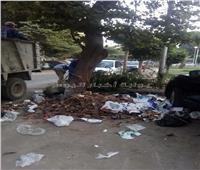 صور|حي المعادي يشن حملة لتنظيف الشوارع