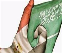 شاهد .. نشطاء سعوديون يدشنون حملة لاستبدال المنتجات التركية بأخرى مصرية