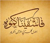 في «اليوم العالمي للغة العربية».. تعرف على أطول كلمة في «القرآن الكريم»  فيديو
