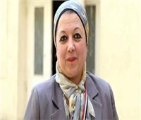 فيديو| برلمانية: مناطق كاملة الخدمات وفرص عمل لسكان العشوائيات