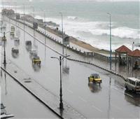 «الري» تحذر من أمطار على الساحل الشمالي والوجه البحري
