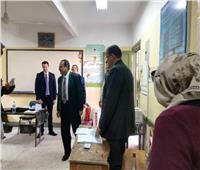 ارتفاع ملحوظ في حضور المواطنين للجان الانتخابات التكميلية بالعريش