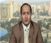 محلل: مراقبين لرصد خروقات ميليشيات الحوثي باليمن