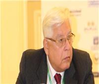 خبير اقتصادي:تبعية المشروعات الصغيرة والمتوسطة للرئاسة «ضرورة»