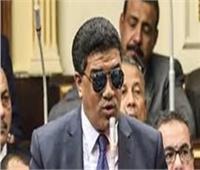 فيديو| «تشريعية البرلمان» تطالب بسرعة صدور لائحة قانون الإعاقة