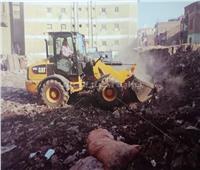 صور| حملة نظافة موسعة بشوارع محافظة الجيزة