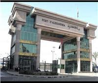 ضبط أكبر عمليه تهريب للمواد الغذائية مجهولة المصدر بميناء الإسكندرية